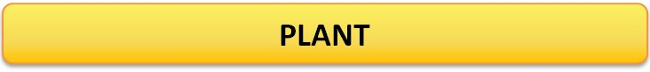 Testo_PLANT_EN